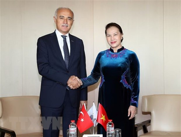 Turkish economic official welcomes NA Chairwoman to business forum hinh anh 1