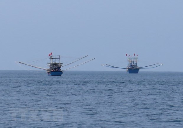 Vietnam has huge potential to develop its blue economy hinh anh 1