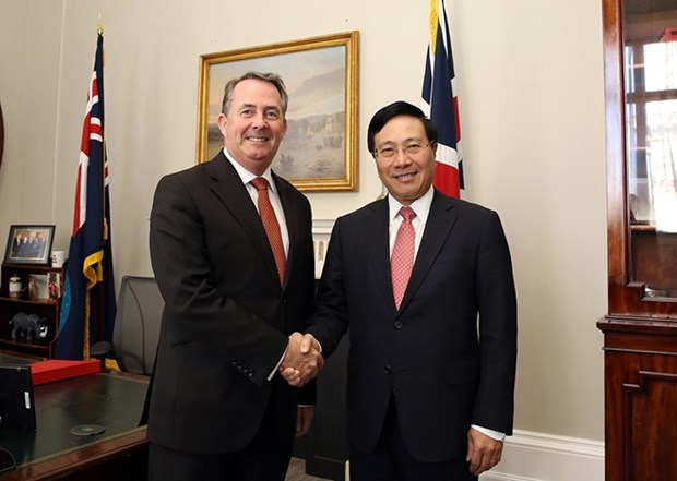 Deputy Prime Minister Pham Binh Minh visits UK hinh anh 1