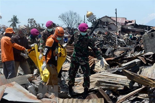 Indonesia: Central Sulawesi to start reconstruction after disasters hinh anh 1