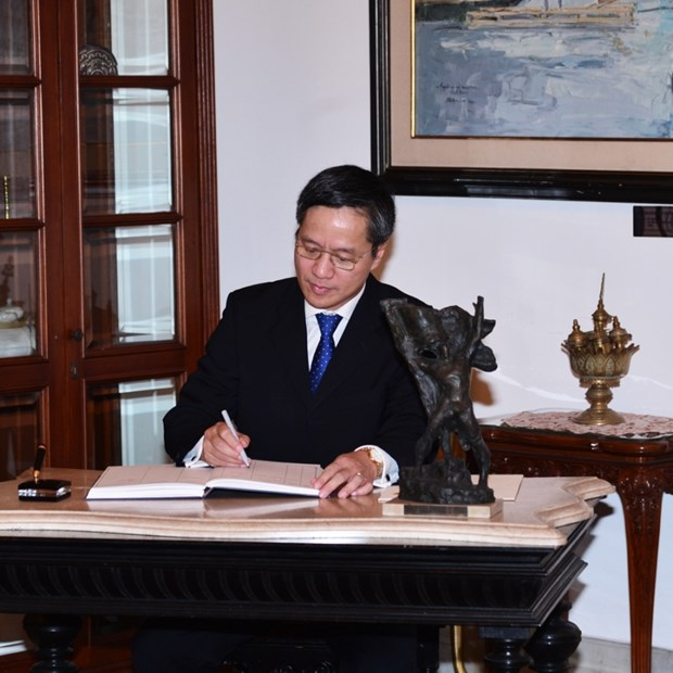 Vietnam treasures global multilateral mechanisms: Ambassador to Indonesia hinh anh 1