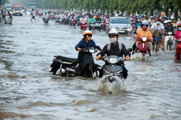 Vietnam exerts efforts to ease climate change impacts: official hinh anh 1