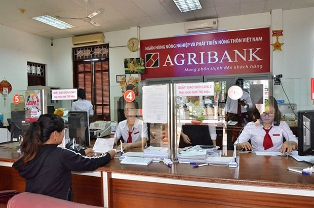 Banks expand networks to increase market share hinh anh 1