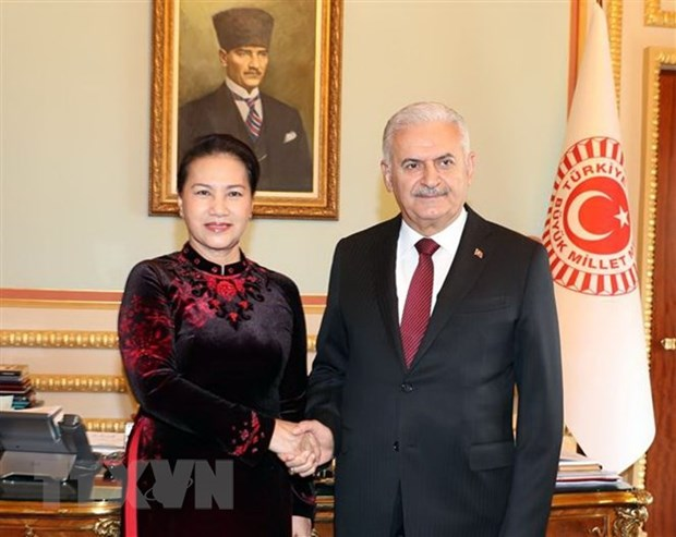 Vietnamese, Turkish top legislators hold talks hinh anh 1