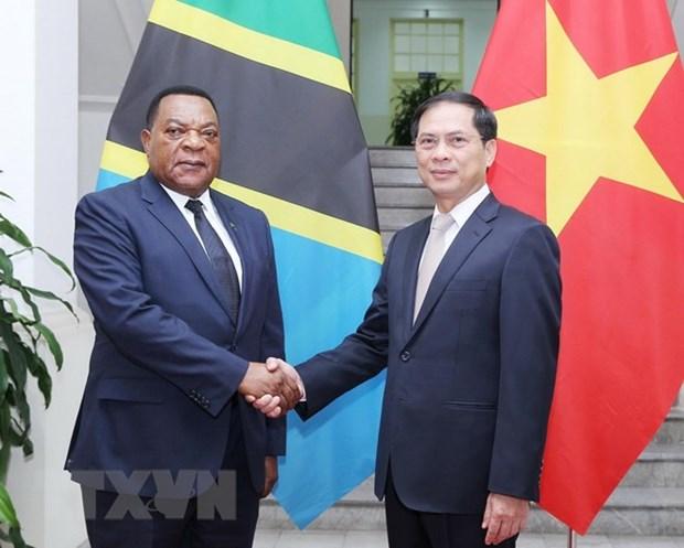Vietnam treasures cooperative ties with Tanzania: Deputy FM hinh anh 1