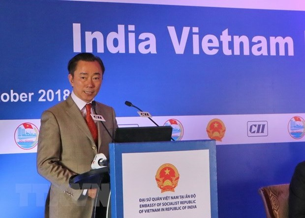 Hau Giang seeks investment from India hinh anh 1