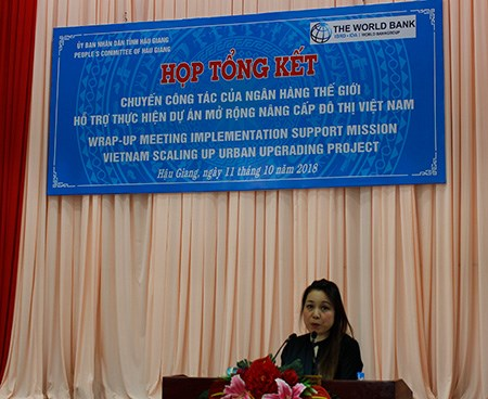Project helps improve urban planning in Mekong cities hinh anh 1