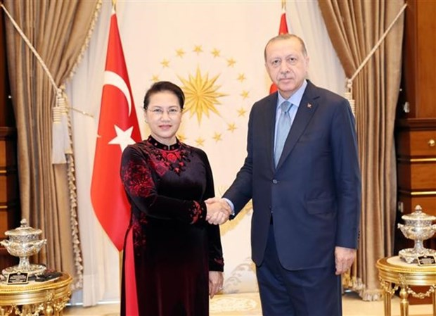 NA Chairwoman meets with Turkish President hinh anh 1