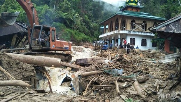Indonesia records surge in number of deaths in landslides hinh anh 1