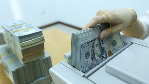 Reference exchange rate down on week's beginning hinh anh 1