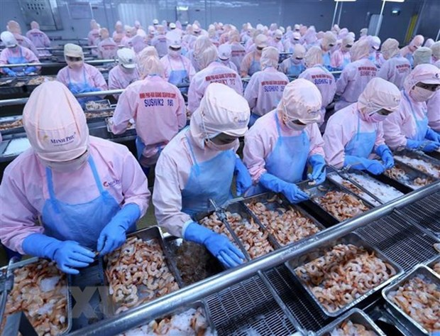 Vietnam - world's top emerging economy: experts hinh anh 1