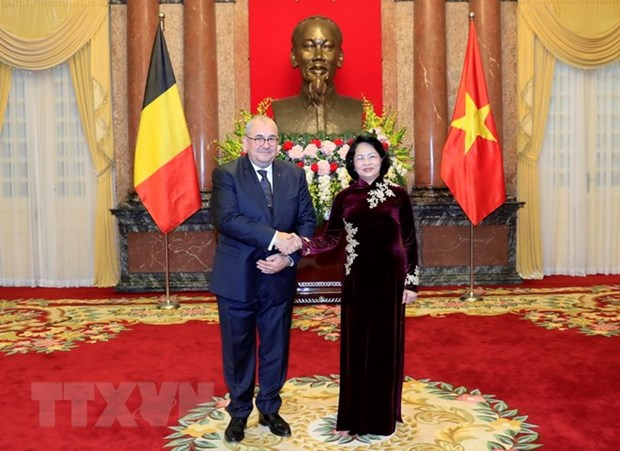 Acting President hosts newly-appointed ambassadors from EU countries hinh anh 2