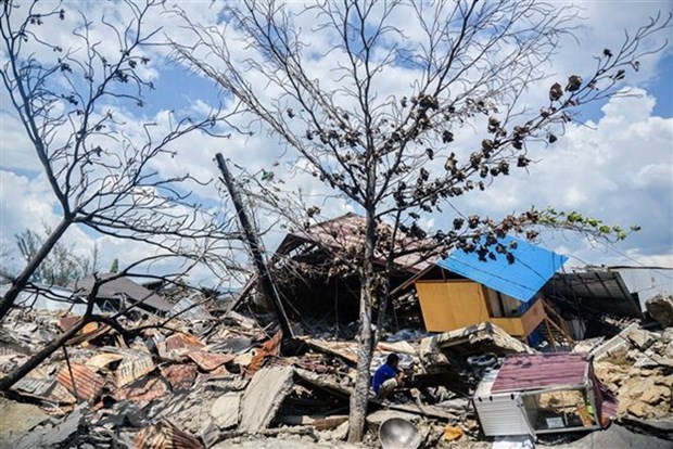 Indonesia to build new city following disasters hinh anh 1