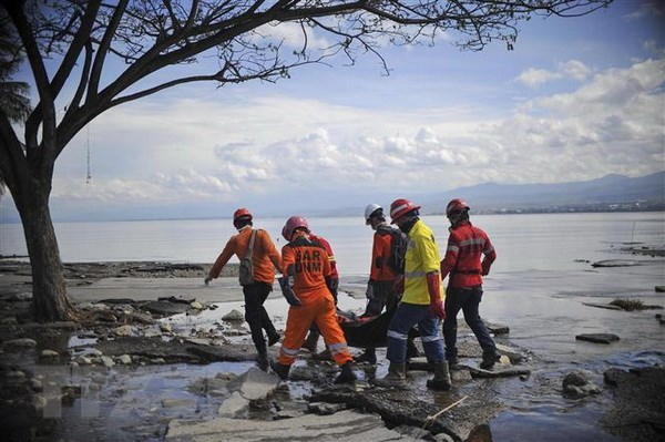ASEAN's centre aids Indonesia's twin-disaster victims hinh anh 1