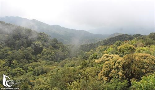 Bach Ma National Park: the 'sleeping beauty' of central Vietnam hinh anh 1