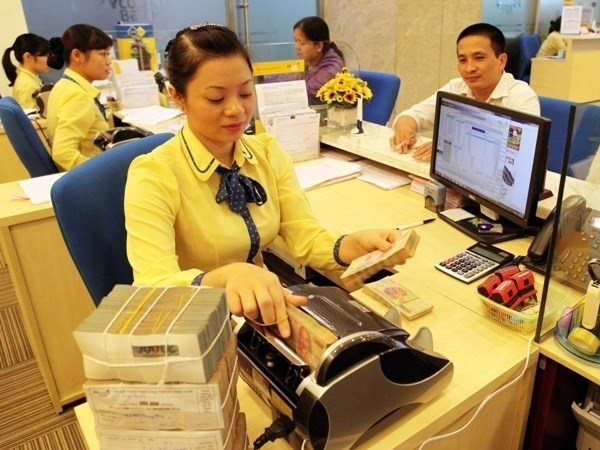 Credit growth must be controlled: experts hinh anh 1