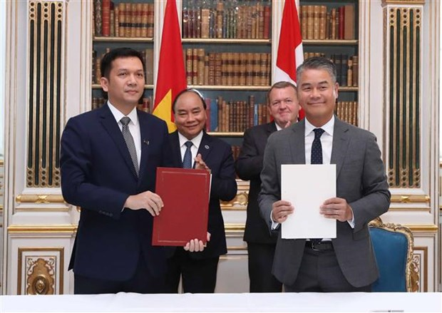 Vietnam treasures comprehensive cooperation with Denmark: PM hinh anh 2