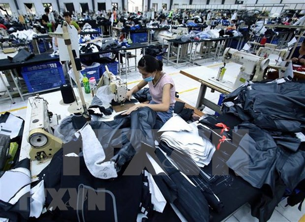 Imports of clothing materials see strong growth hinh anh 1