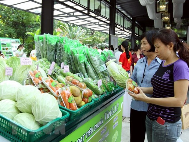 Nearly 80 percent of fruit stores in Hanoi meet safety standards hinh anh 1