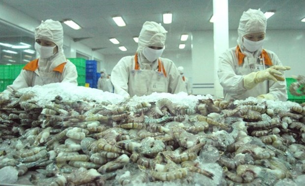 Intensive processing helps Vietnamese shrimp gain competitive edge hinh anh 1