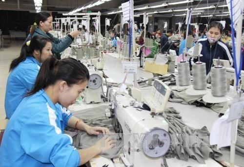 Dong Nai: 10-month FDI surpasses 60 percent of yearly target hinh anh 1