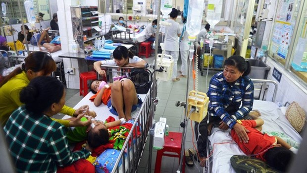 Vaccination is key to outbreak prevention: experts hinh anh 1