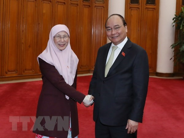 Vietnam always treasures relations with Malaysia: PM hinh anh 1