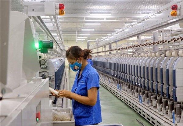 VITAS works with WWF to green Vietnam's apparel sector hinh anh 1