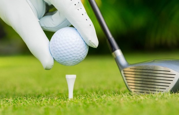 Golf tournament promotes Vietnam-Germany friendship hinh anh 1