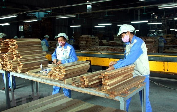 Forestry sector in 5.72 billion USD trade surplus hinh anh 1