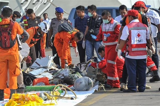 Vietnam extends sympathy to Indonesia over Lion Air plane crash hinh anh 1