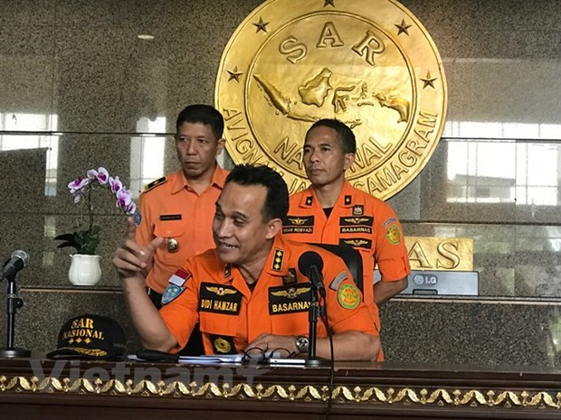 Indonesia: Search for Lion Air plane set to last seven days hinh anh 1