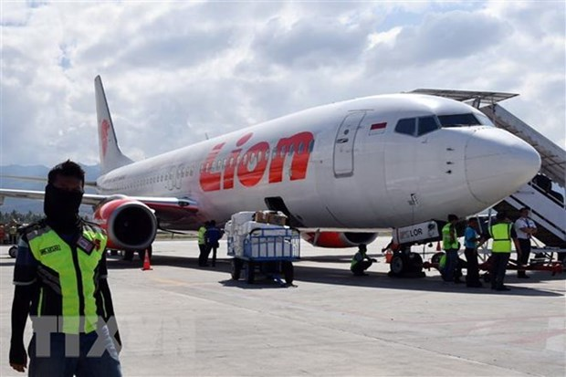 Indonesia orders checks on all Boeing 737 Max planes hinh anh 1