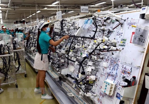 Index of Industrial Production rises 10.4 percent in 10 months hinh anh 1