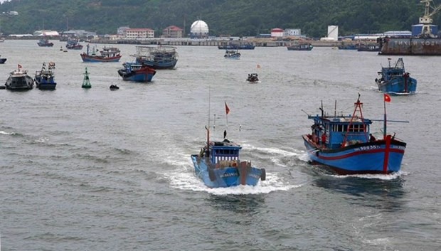 """Yellow card"" warning motivates responsible, sustainable fishery: Minister hinh anh 1"