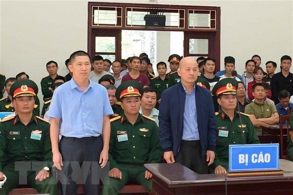 12-year jail sentence upheld for Dinh Ngoc He hinh anh 1