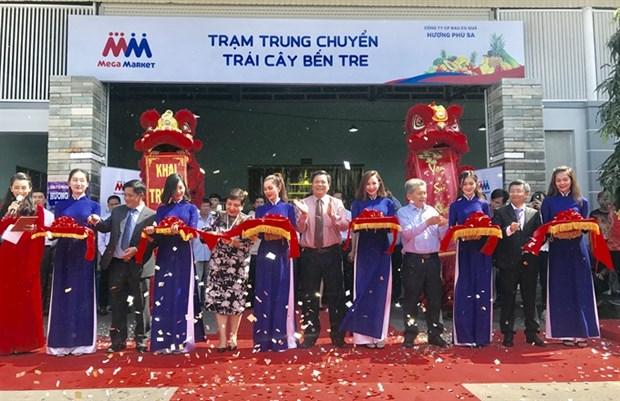 Ben Tre opens fruit, veg supply depot hinh anh 1