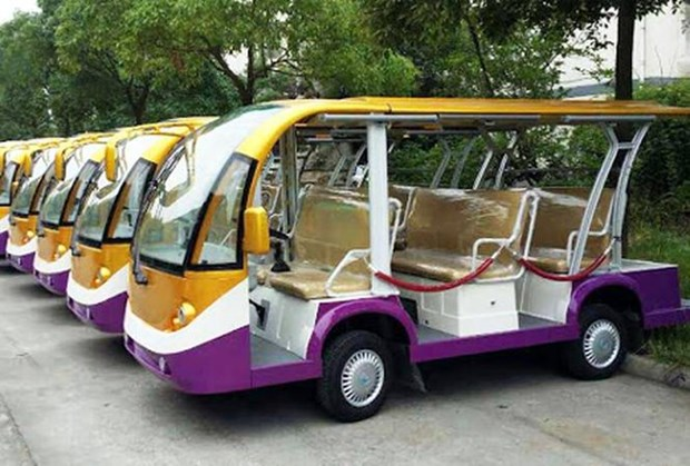 Electric car service for tourists to be launched in Da Lat hinh anh 1