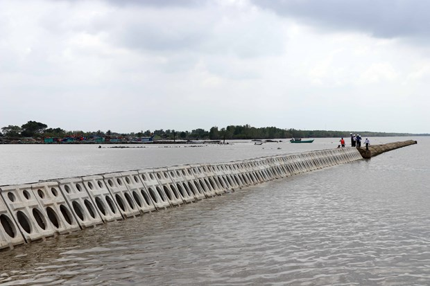 More than 300 billion VND to build sea dyke in Thua Thien-Hue hinh anh 1
