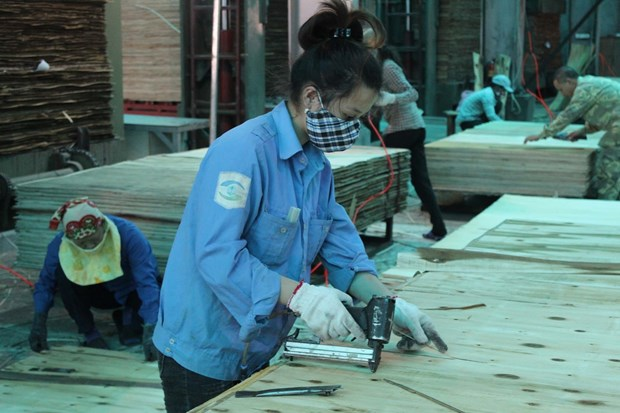 FLEGT-VPA to fuel Vietnam's wood export to global markets hinh anh 1