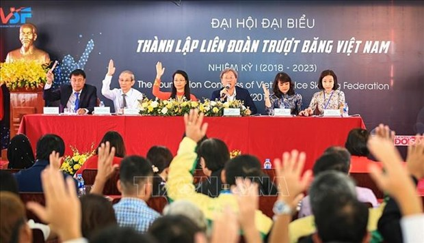 New association to promote skating in Vietnam hinh anh 1