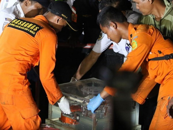 Crashed Indonesian plane had faulty air speed indicator hinh anh 1
