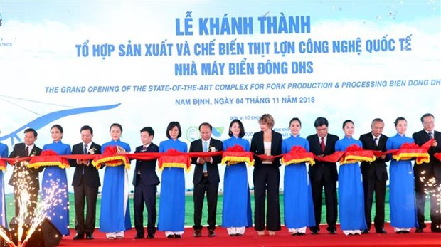 Hi-tech pig slaughterhouse opened in Nam Dinh hinh anh 1
