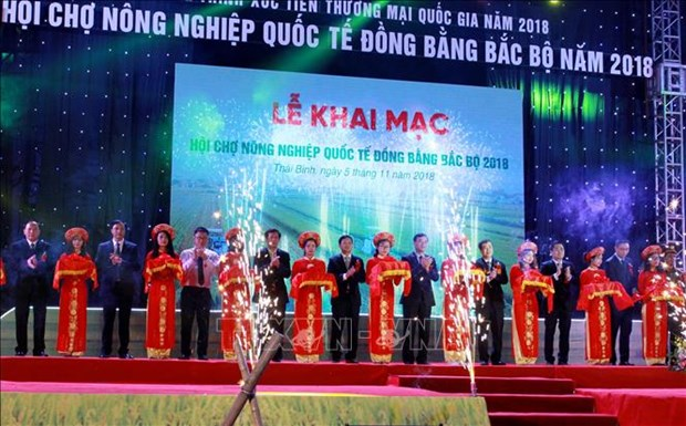 Int'l agriculture fair for northern region opens in Thai Binh hinh anh 1