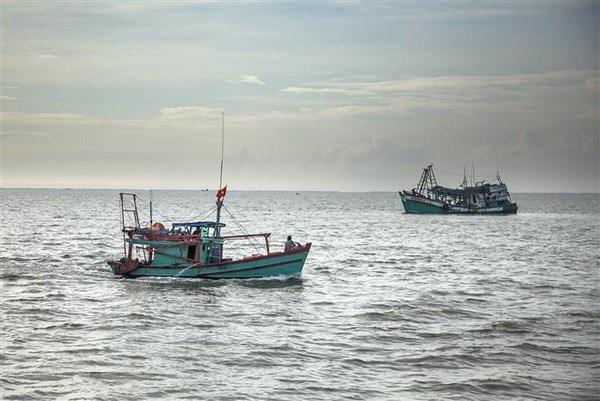 Ca Mau encourages fishing vessels to install monitoring devices hinh anh 1