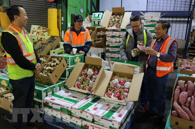 Conference promotes farm product export to US hinh anh 1