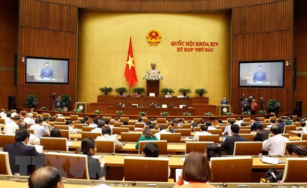 NA deputies deliver mixed opinions on amended laws hinh anh 1