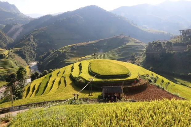 Tourism helps improve ethnic life in Mu Cang Chai hinh anh 1