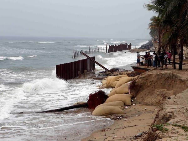 Tra Vinh to build embankments to protect local coast hinh anh 1