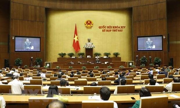 National Assembly discuss bills on amnesty, husbandry on November 7 hinh anh 1